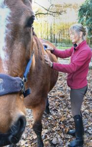 Margreet Bouwmeester-Centered Riding-Clinician-NES
