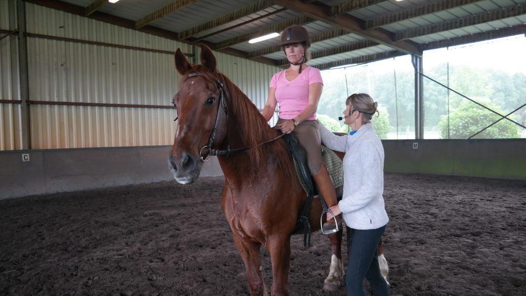 centered riding, basics, blokken bouwen, alona voor paard en mens